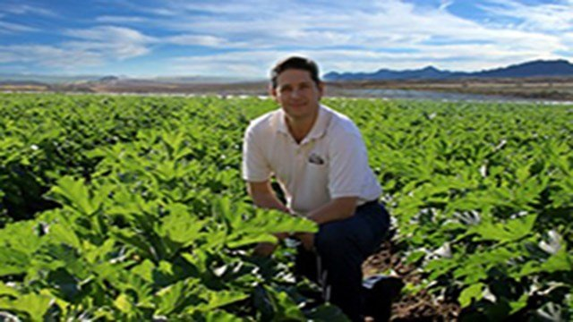 Theojary Crisantes Jr. of the Nogales-based farm, Wholesum Harvest, told a U.S. Senate committee that a USDA advisory board on organics is instead muddying the waters for organic growers like him. (Source: Wholesum Harvest)