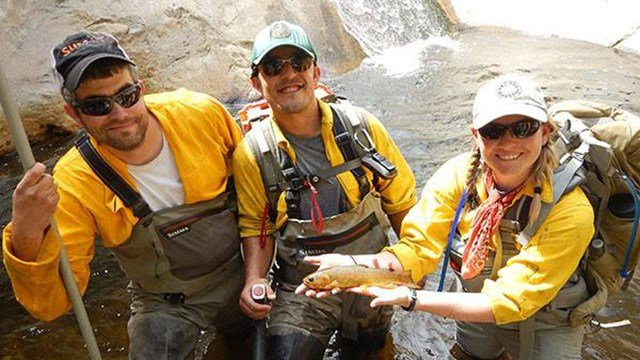 Arizona Game and Fish Department employees saved Gila Trout from two streams on Mount Graham. (Source: Game and Fish Department)