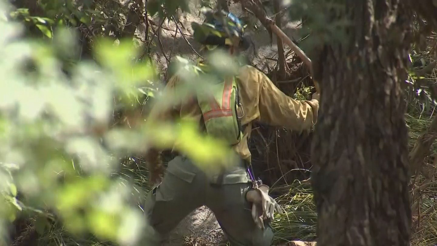 Searches include divers probing ponds of standing water along the river and forestry crews using saws to cut up tree limbs to allow other searchers to dig and check under rocks and deep piles of debris. (Source: 3TV/CBS 5)