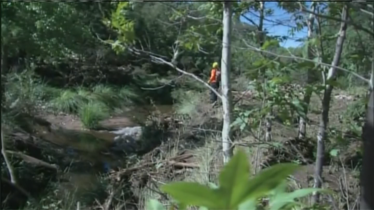 Cold Springs post flash flood. (Source: 3TV/ CBS 5)