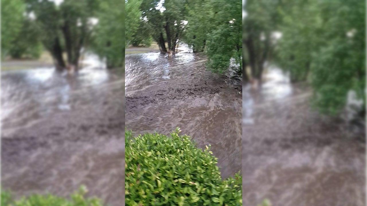 Flash flooding in Big Bug Creek. (Source: Lynn Turley)