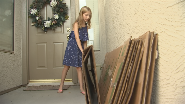 A tarantula emerged from these boxes at a home in Cave Creek. (Source: 3TV/CBS 5)