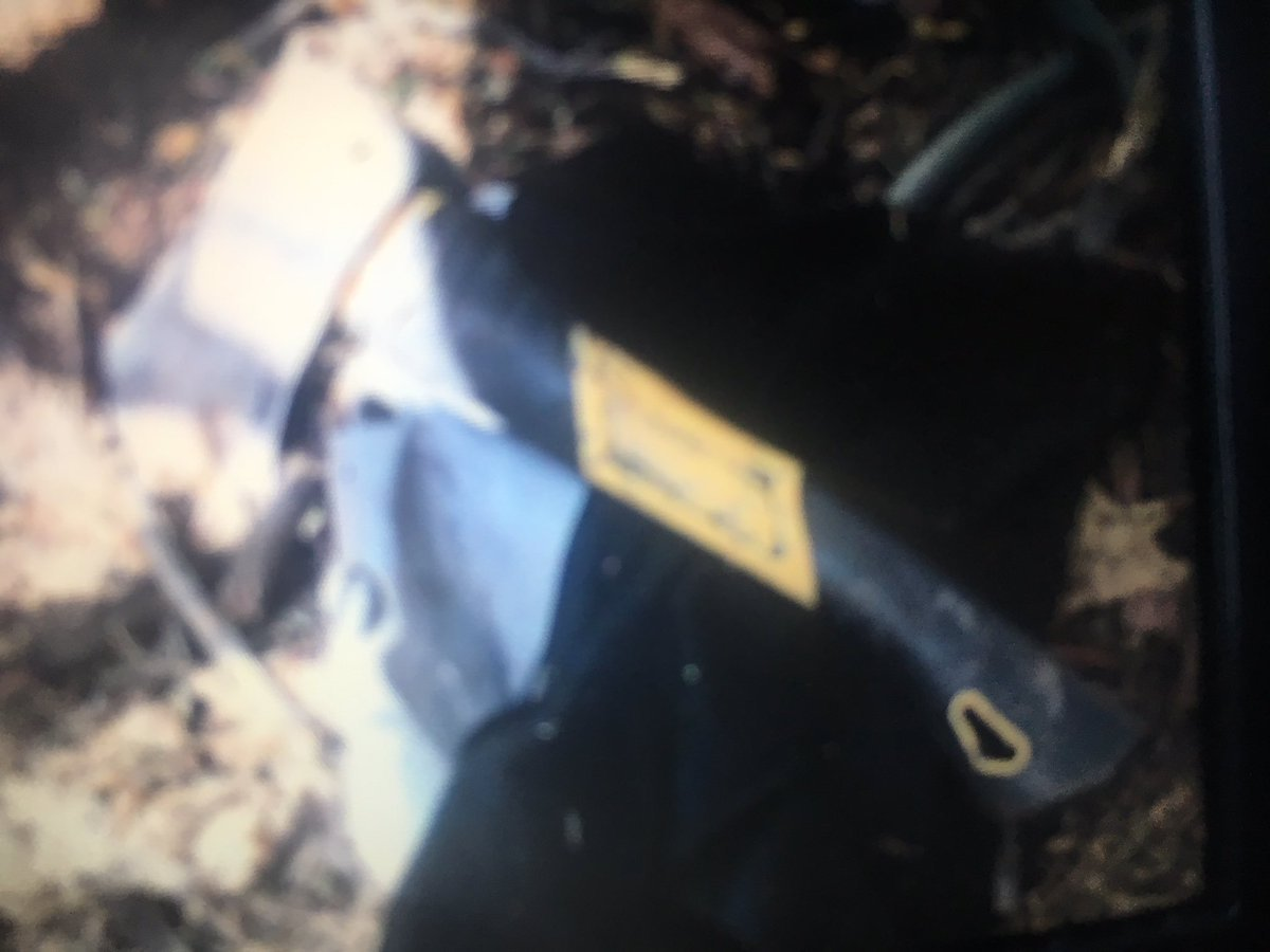 The 911 caller described the weapon as an ax or a knife but it appears to be a hatchet. (Source: Glendale Police Department)