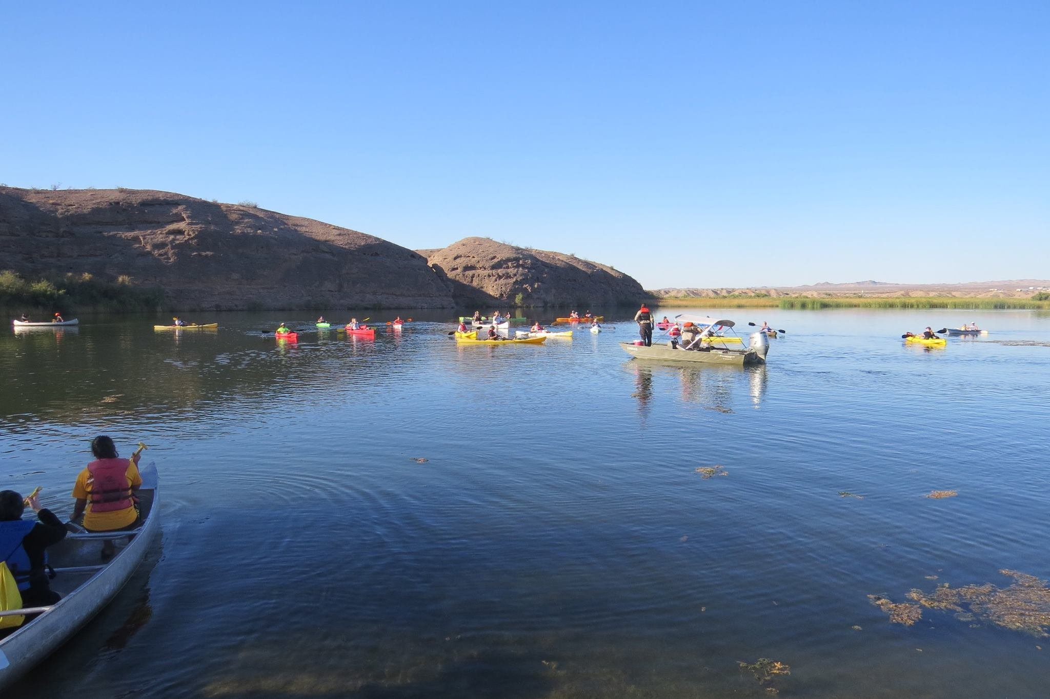 A new proposal would establish a series of no-wake and restricted zones throughout the Havasu National Wildlife Refuge's backwaters. (Source: Facebook.com)