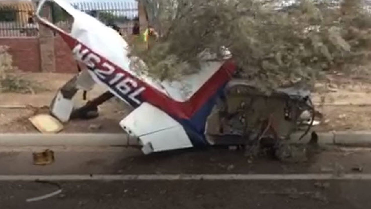 The plane went through a fence and lodged into a tree alongside a road leading to the airport. (Source Phoenix Fire Department)