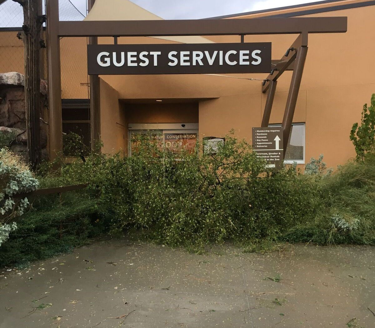 The Phoenix Zoo said for the safety of the animals, guests and staff, they will have to close the zoo while they clean up and repair the storm damage. (Source: Phoenix Zoo)