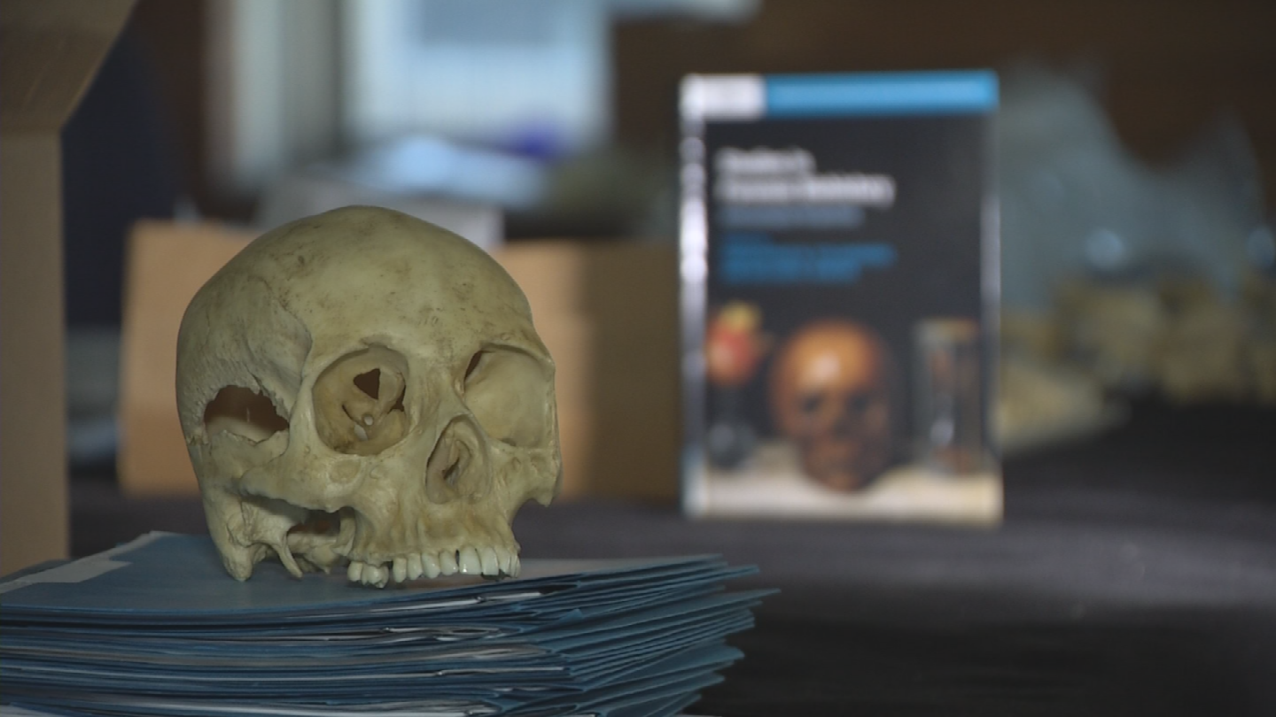 Researchers in an emerging field called biohistory are trying to get to the bottom of mysteries that span centuries. (Source: 3TV/CBS 5)