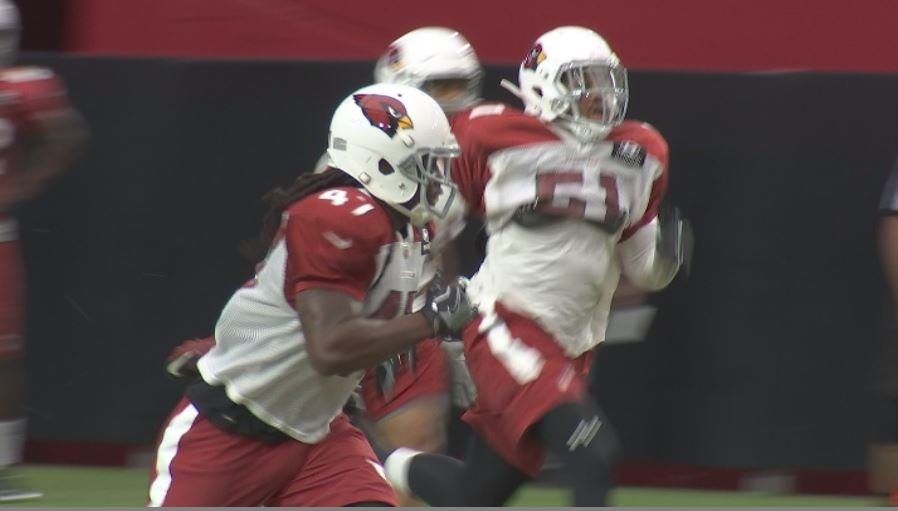 "Cardinals rookie ""Ironhead"" Gallon is fighting for a spot on the roster. (Source: 3TV/CBS 5)"