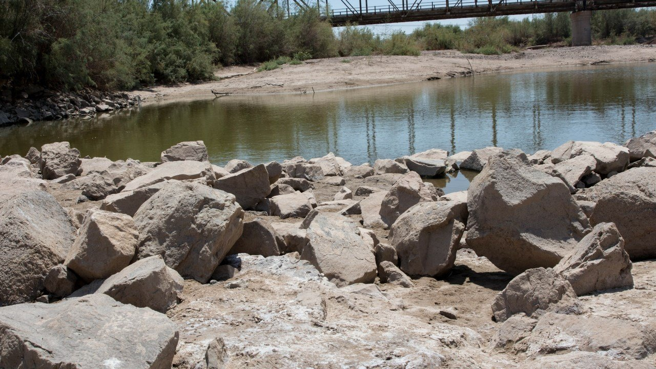 Low water levels at Gila River reveal the increased salt on the riverbeds caused by Salt Cedar trees which hinders native species from growing. (Source: Tynin Fries/Cronkite News)