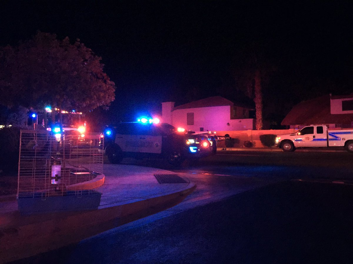 Fire crews from Gilbert and Mesa worked to get control of the house fire and in the process saved several animals inside. (Source: Gilbert fire)