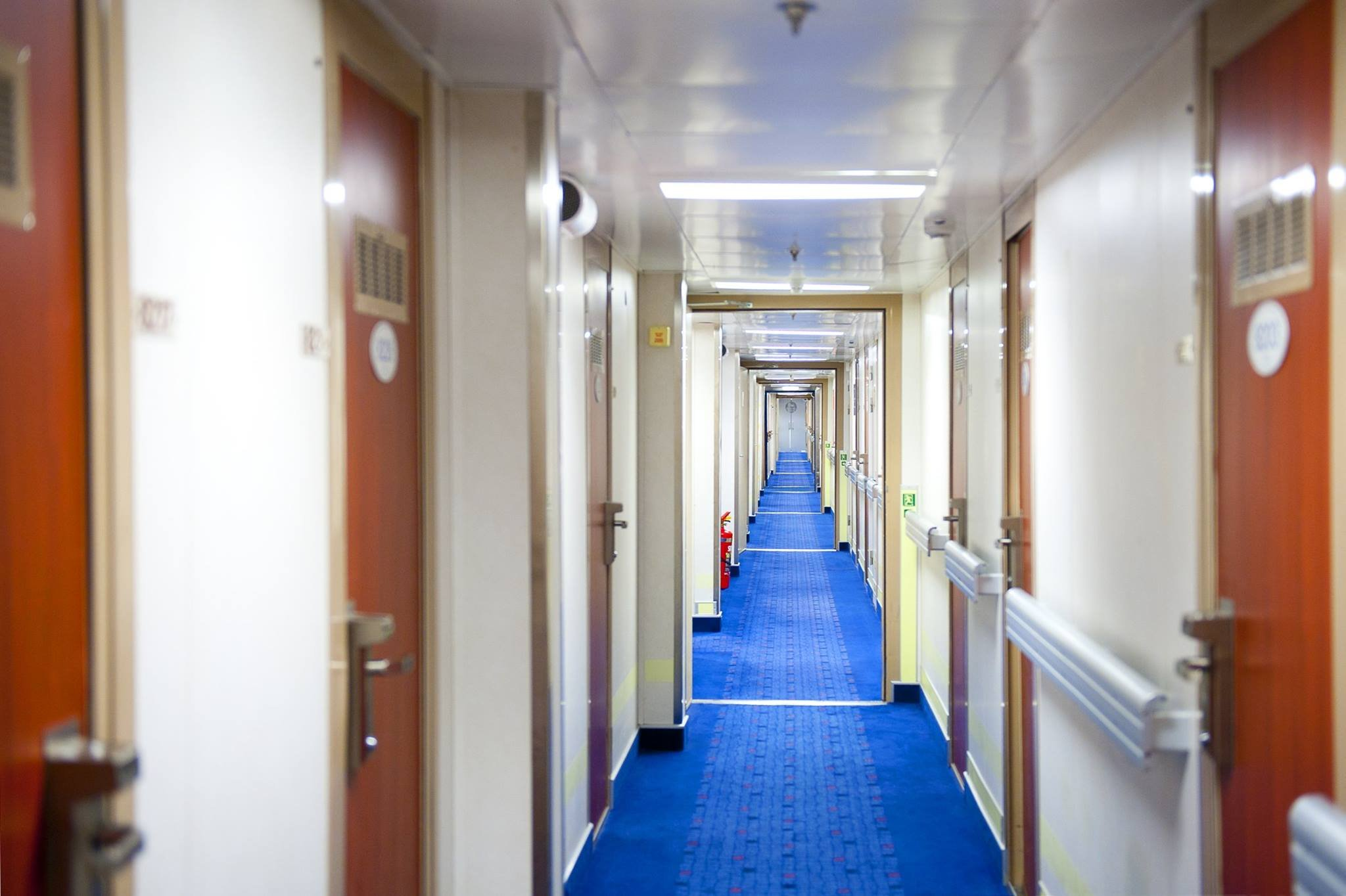 Ship Tip: Staterooms located near elevators and stairs can experience increased foot traffic and noise. Clients with sound concerns will find peace further away from these main passenger areas. (Source: Cruise Lines International Association via Facebook)