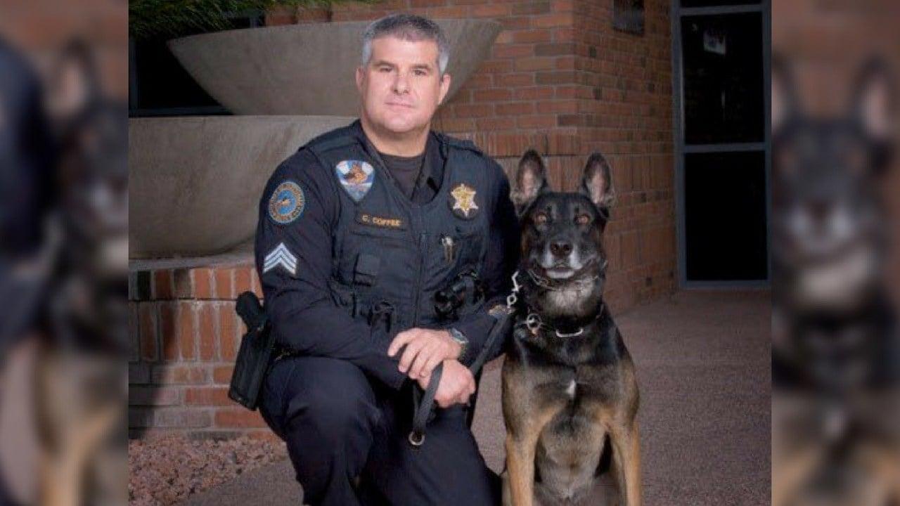 Havoc (Source: Scottsdale Police Dept.)
