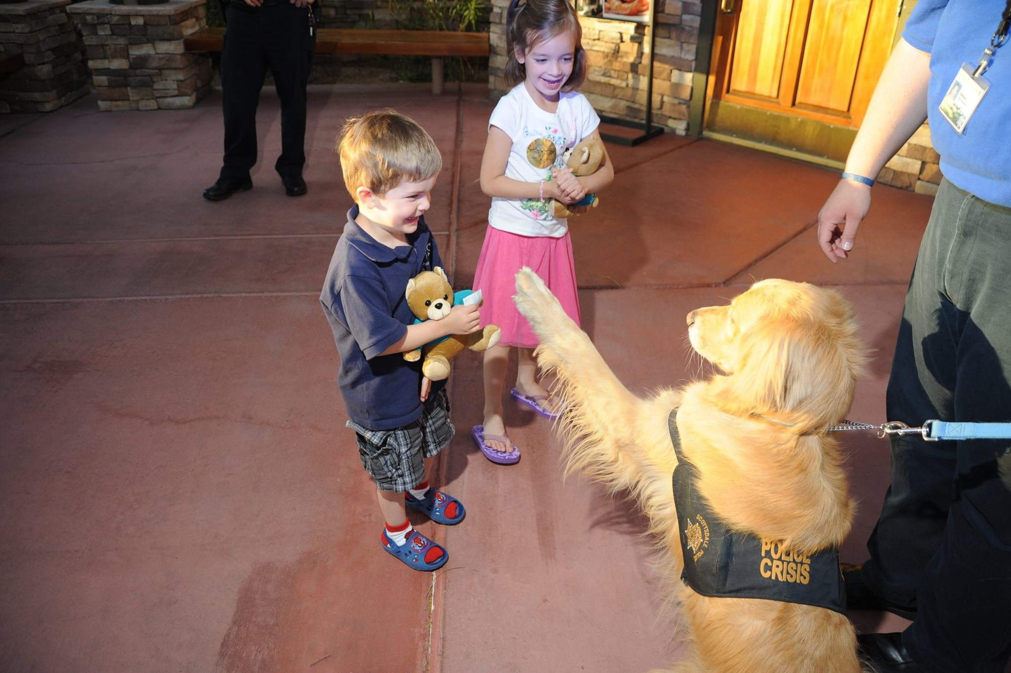 """Fozzie"" (Source: Scottsdale Police Department)"
