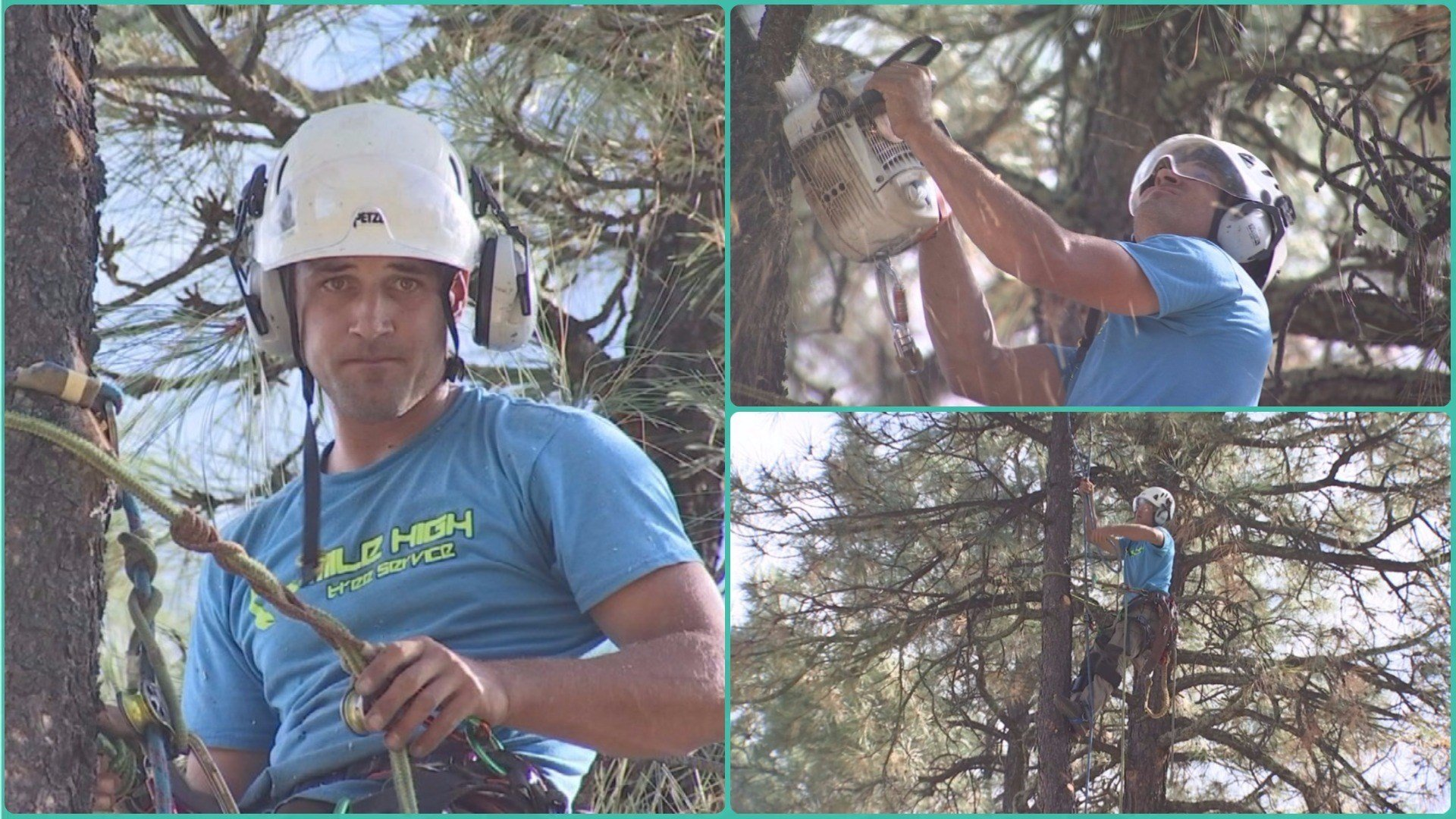 Today Bunch is a tree climber. 'It's like the closest thing to hotshotting I can get to without being gone ...,' he said. (Source: 3TV/CBS 5)