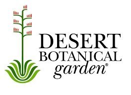 The Desert Botanical Garden has announced its Electric Desert exhibition (Source: 3TV/CBS 5)