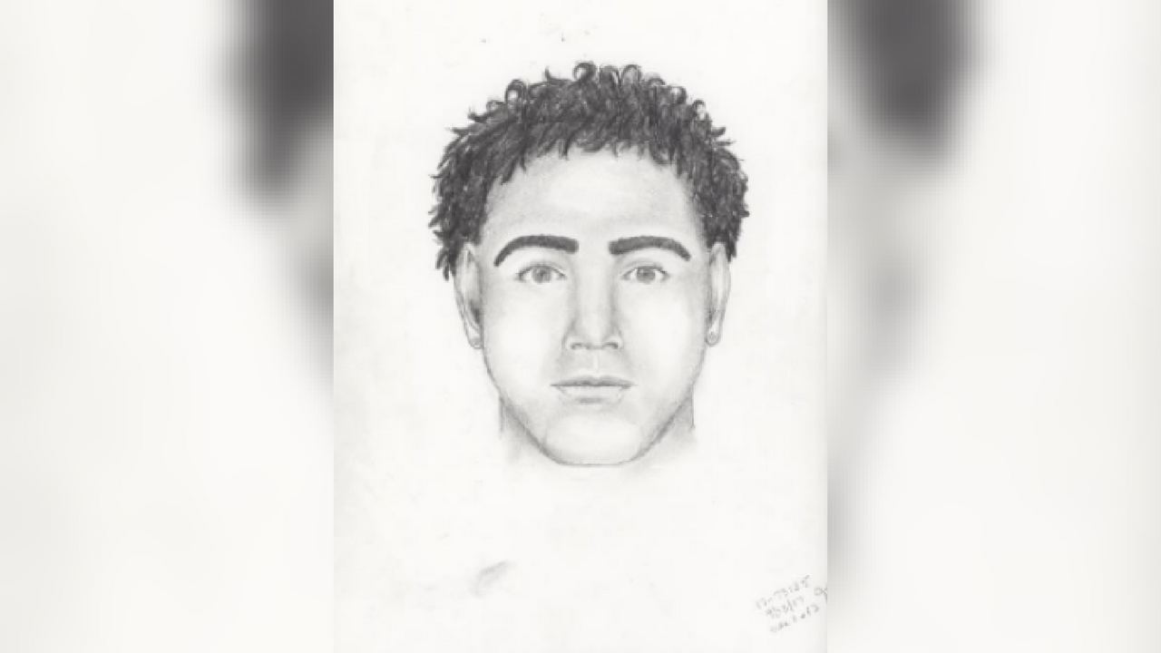 The Chandler Police Department released a sketch of a sexual assault suspect. The incident happened in 2014. (Source: Chandler Police Department)