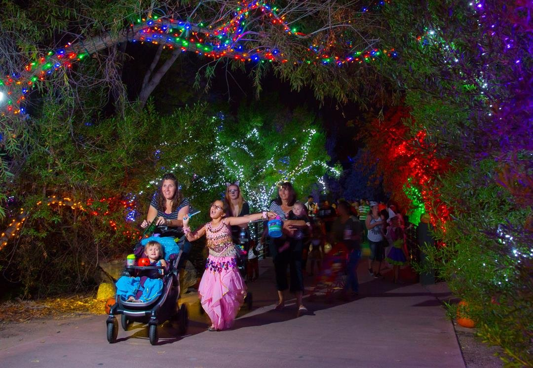 For the faint of heart, you can stroll down the Trick-or-Treat Trail. (Source: Phoenix Zoo)