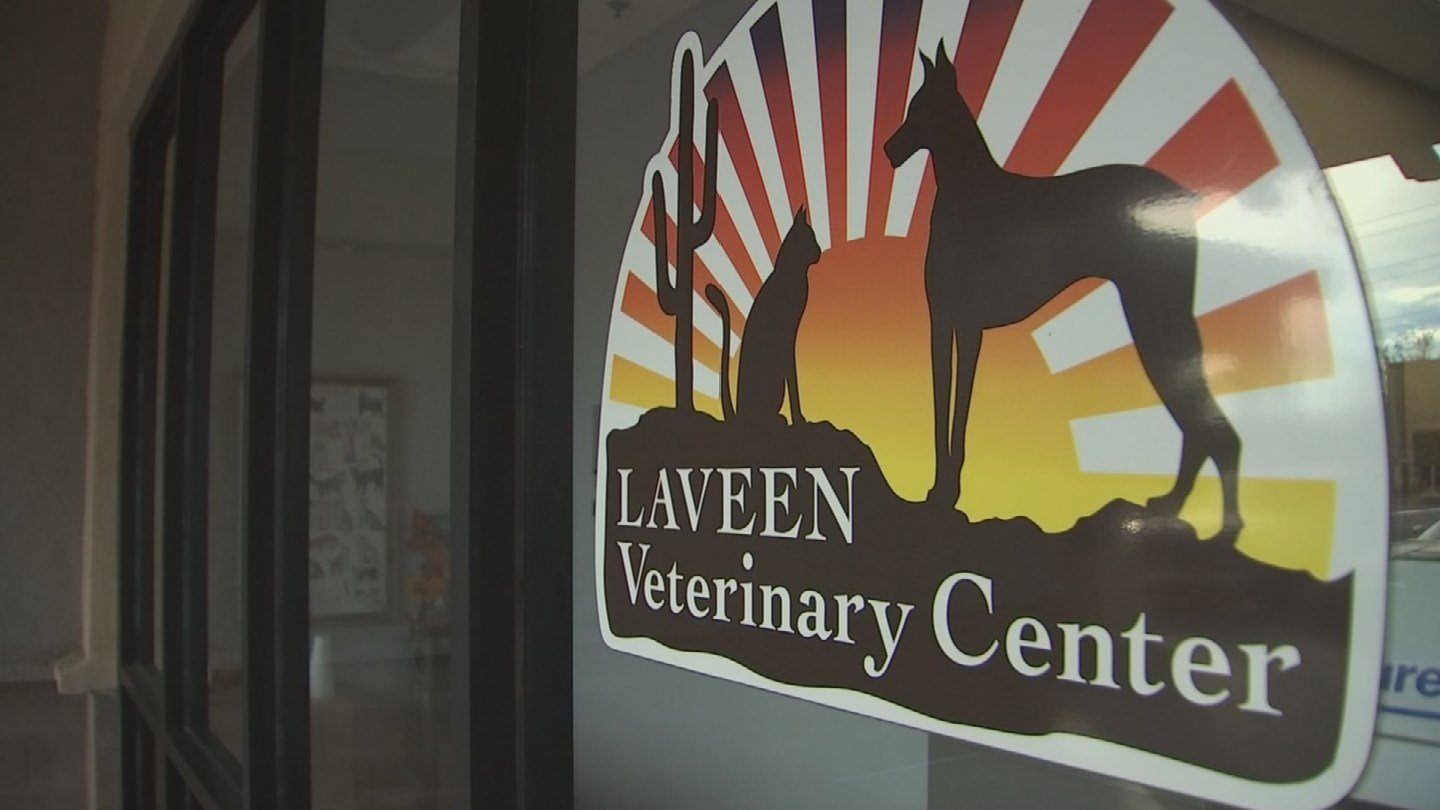 Cases of Parvo are on the rise in Laveen. 13 Nov. 2017 (Source: 3TV/CBS 5 News)