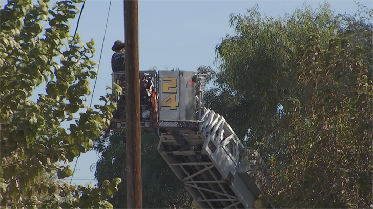 Firefighters used a ladder truck with a bucket to get him down, crews said. (Source: 3TV/CBS 5)