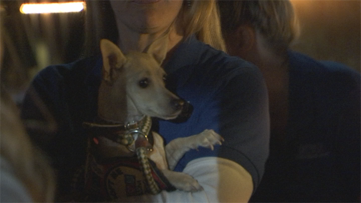 A special beer from Four Peaks helps benefit the Arizona Humane Society. (Source: 3TV/CBS 5)