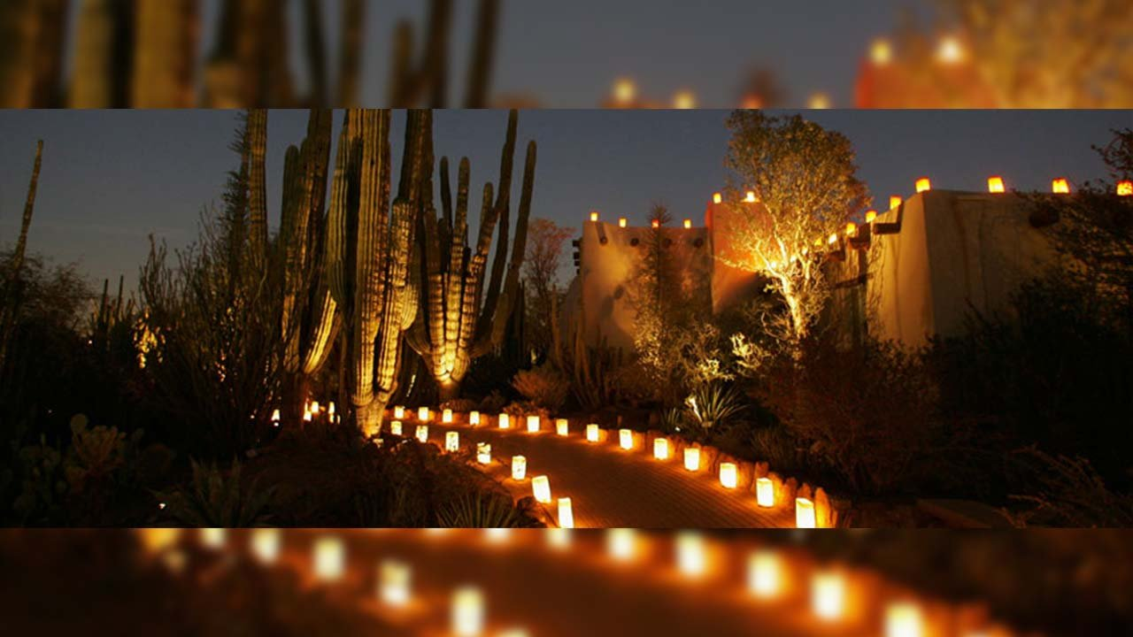(Source: Desert Botanical Garden)