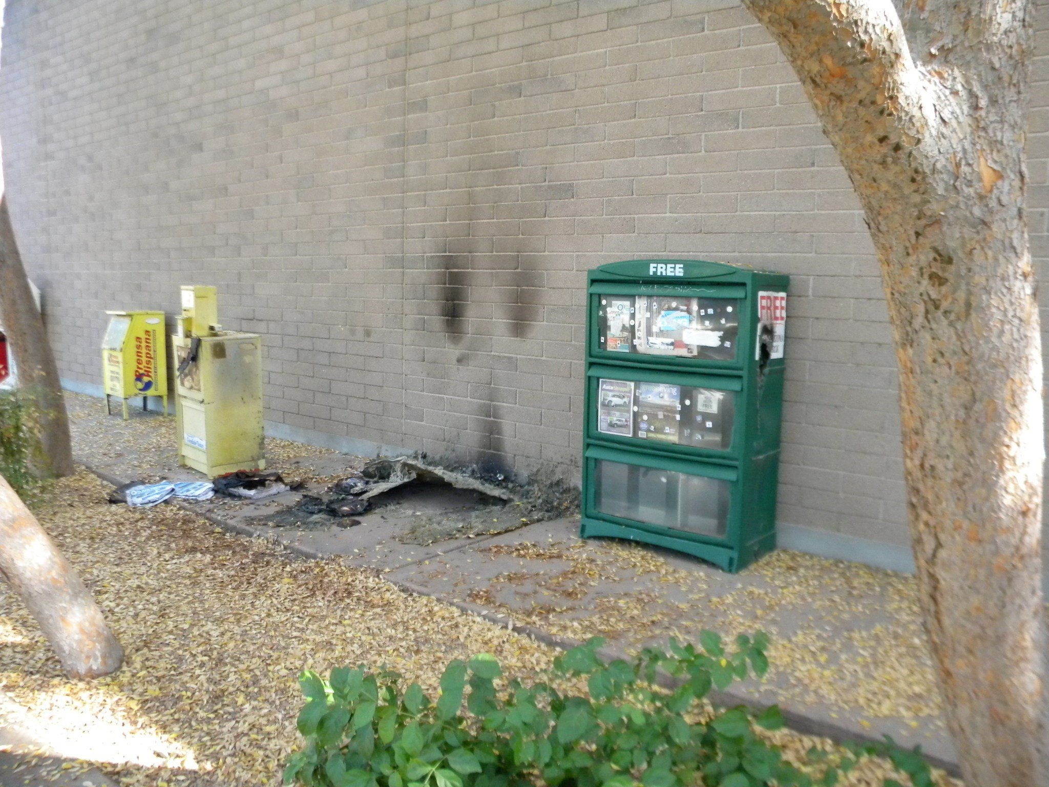 A newspaper holder was lit on fire at about 9:30 p.m. Dec. 13. (Source: Glendale Police Dept.)
