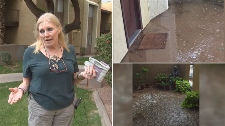 Janis Gabriel moved into her apartment at Tempe Vista Apartments more than seven months ago, and within a few weeks, the flooding fiasco began. (Source: 3TV/CBS 5)