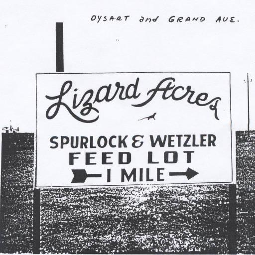 Lizard Acres - Spurlock & Wetzler Feed Lot (Source: Del Webb Sun Cities Museum via Sun City West Historical Society)