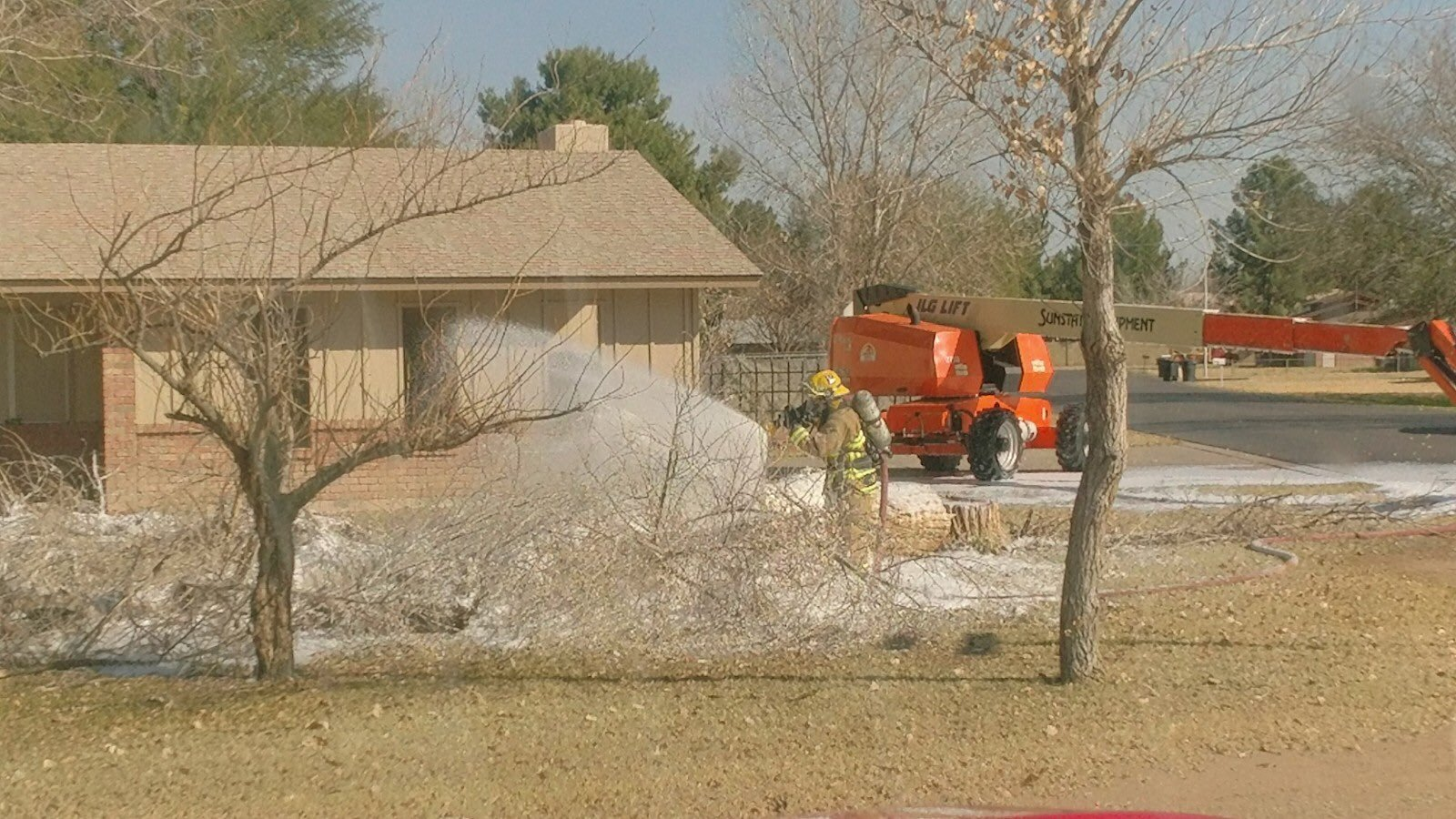 Tree cutting crew in Chandler attacked by bees Friday. 26 Jan. 2018 (Source: Chandler Fire and Medical Dept.)