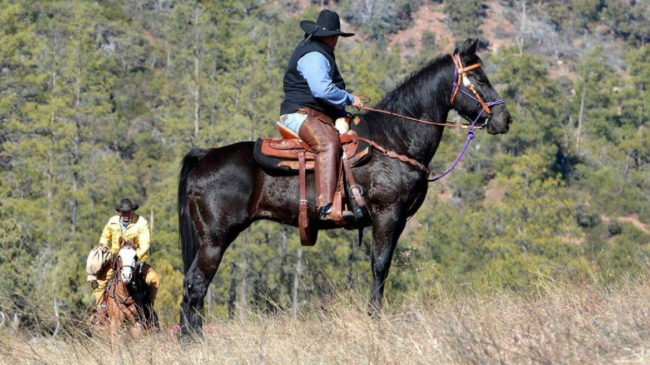 The mail bag is passed off between riders. Feb. 2017 (Source: Hash Knife Pony Express.com)