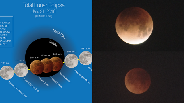 """A special """"super blue blood moon"""" stunned on Jan. 31. (Source: NASA/3TV/CBS 5)"""