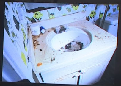 The City of Glendale mailed the pictures to Almeida in June of last year telling Almeida that her home, at one time, was found to be in extremely unhealthful conditions due to animal hoarding and significant animal waste. (Source: 3TV)