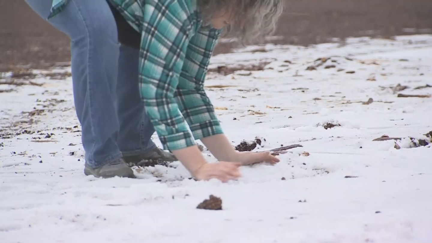 """It's better than nothing,"" said Amanda Cabral, who is visiting from Tucson and found just enough snow to have a snowball fight. ""When you're from Tucson, you never get to see any of this."" (Source: 3TV/CBS 5)"