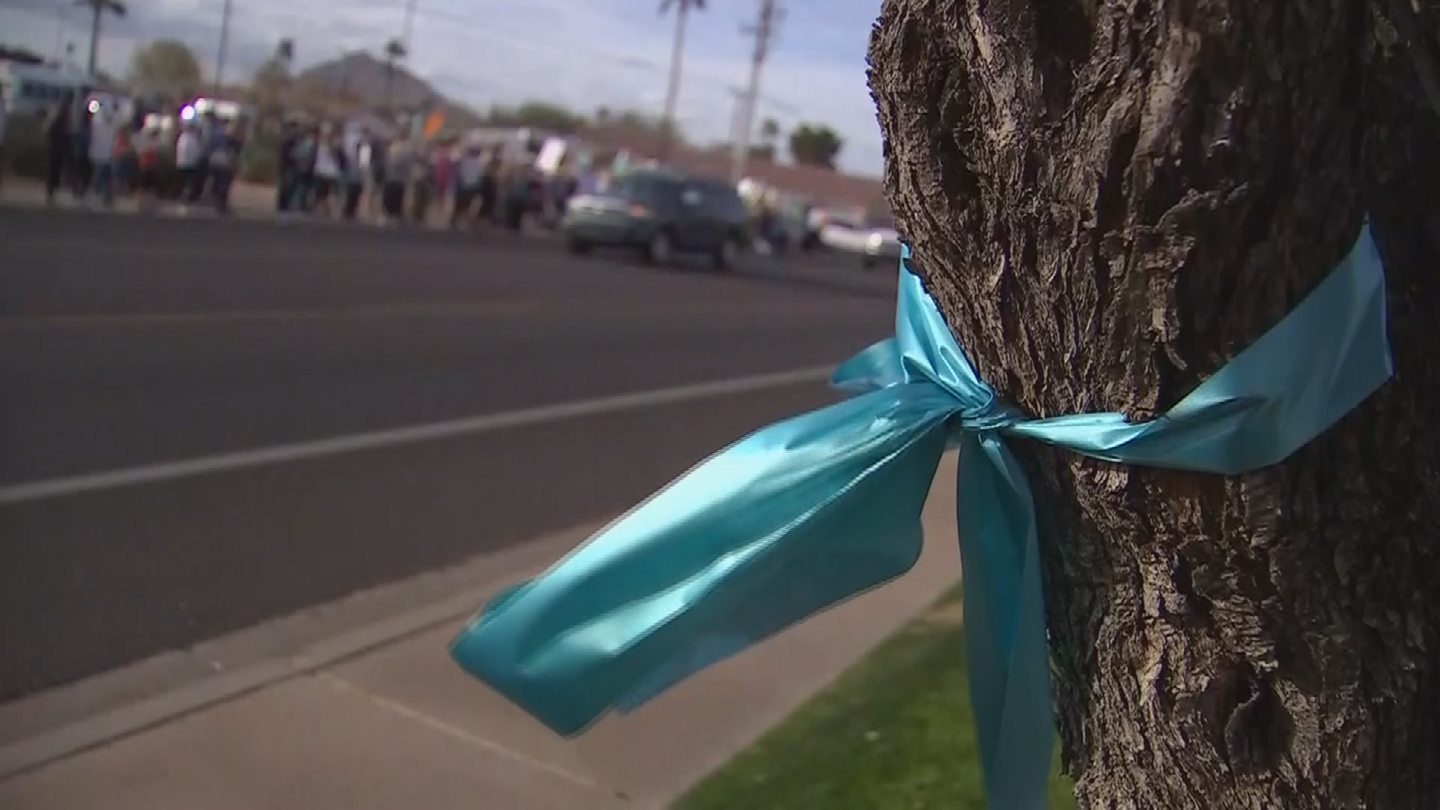 Some SUSD families have put out teal ribbons, showing they want a change in leadership. (Source: 3TV/CBS 5)