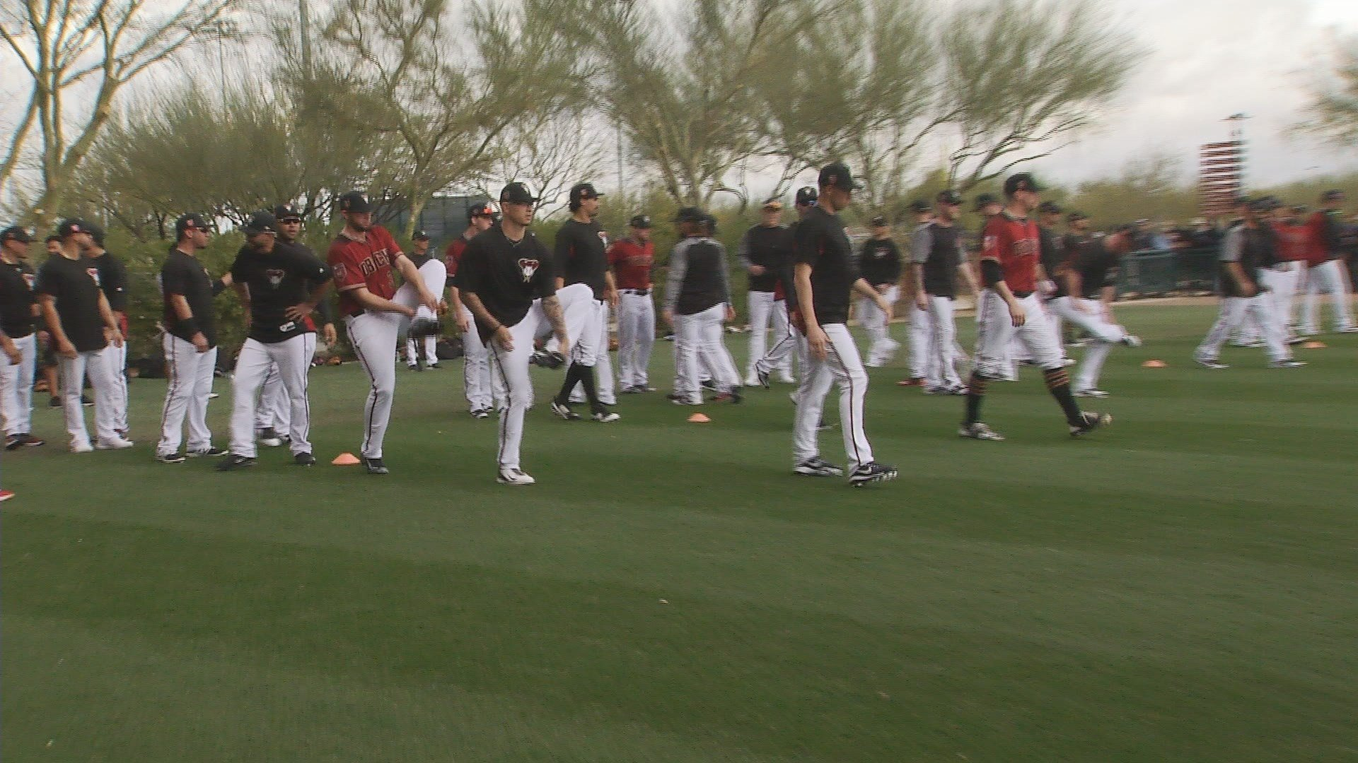 Full squad workouts began today at the Dbacks camp. (Source: 3TV/CBS 5 News)