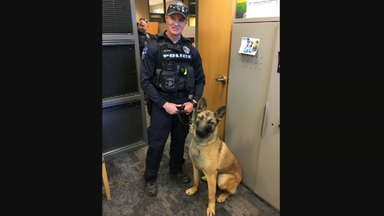 Tempe PD's newest K9 hire, Chance, smiles as he starts his new job. (Source: Cmdr. Michael Pooley of Tempe Police Department via Twitter)