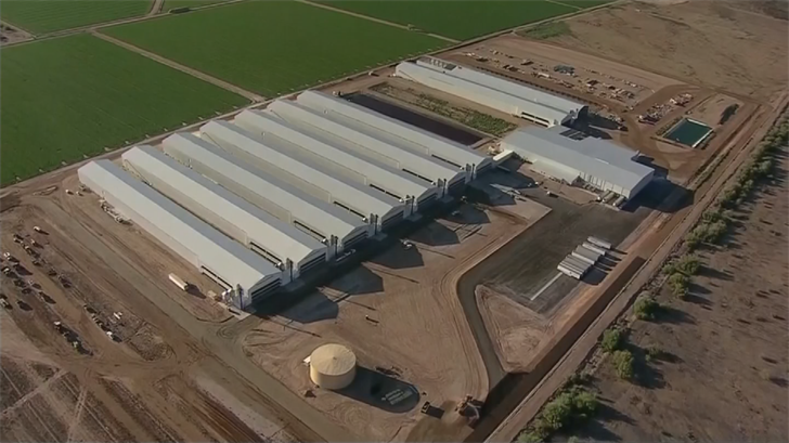 The federal government plans to a study on the impact of Hickman's Family Farms' operations plant. (Source: 3TV/CBS 5)