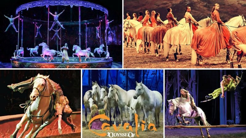 Cavalia Odysseo has extended its stay in Scottsdale (Source: 3TV/CBS 5)