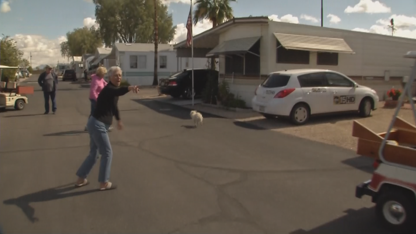 One of the dogs went into a mobile home park. (Source: 3TV/CBS 5)
