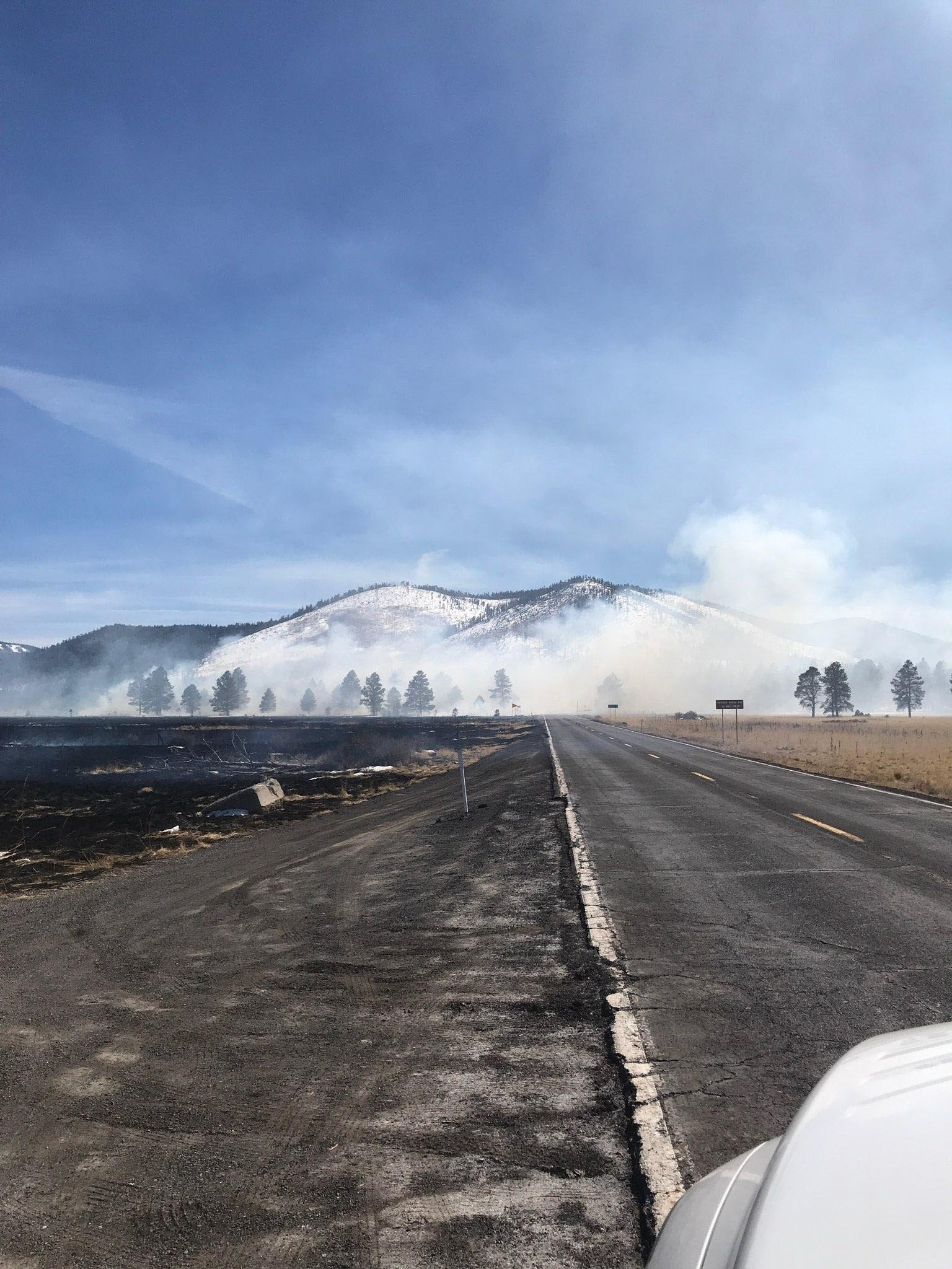 U.S. Forest Service officials say the fire began shortly after noon Tuesday, but crews stopped its spread by 5:30 p.m. at an estimated 335 acres (about half a square mile). (Source: U.S. Forest Services)