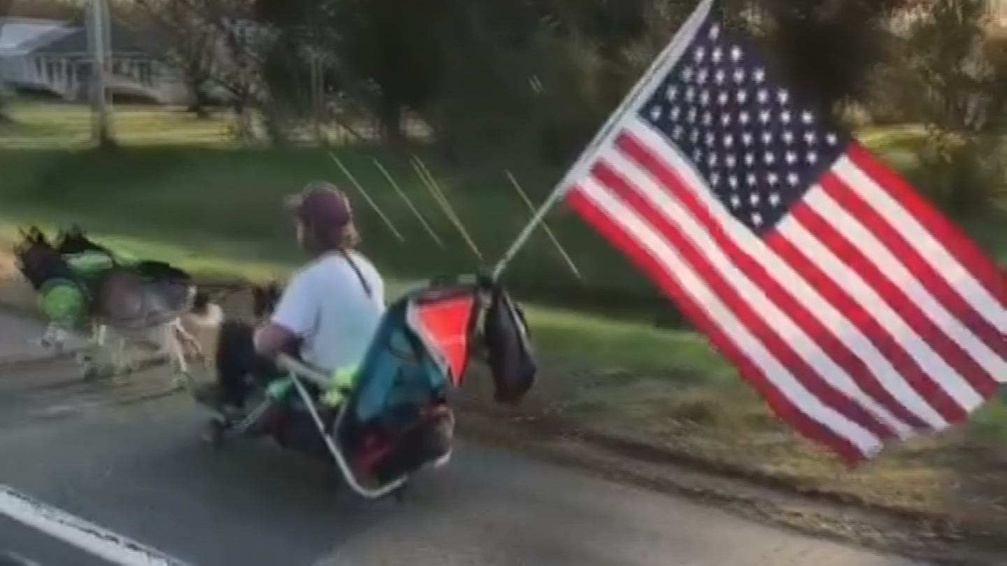 Georgie Cutright is going across the country on a dog sled. (Source: 3TV/CBS 5)