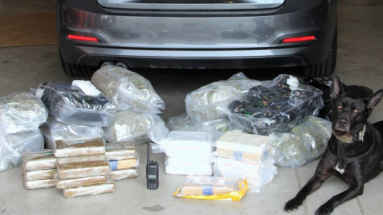 K9 'Vader' with siezed drugs including 47.5 lbs. cocaine and 27.5 lbs. of marijuana. (Source: Yavapai County Sheriff Dept.)