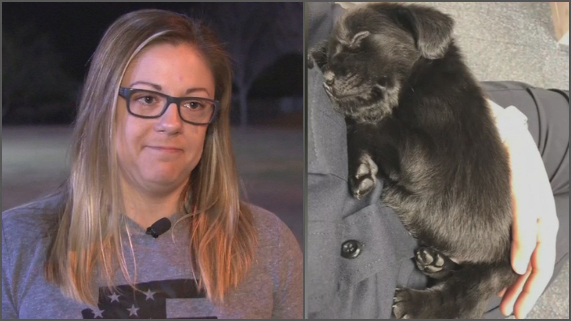 Officer Stacie Gryzenia was the hero four puppies needed just a week and a half ago. Now one of them has become part of her family. (Source: 3TV/CBS 5)