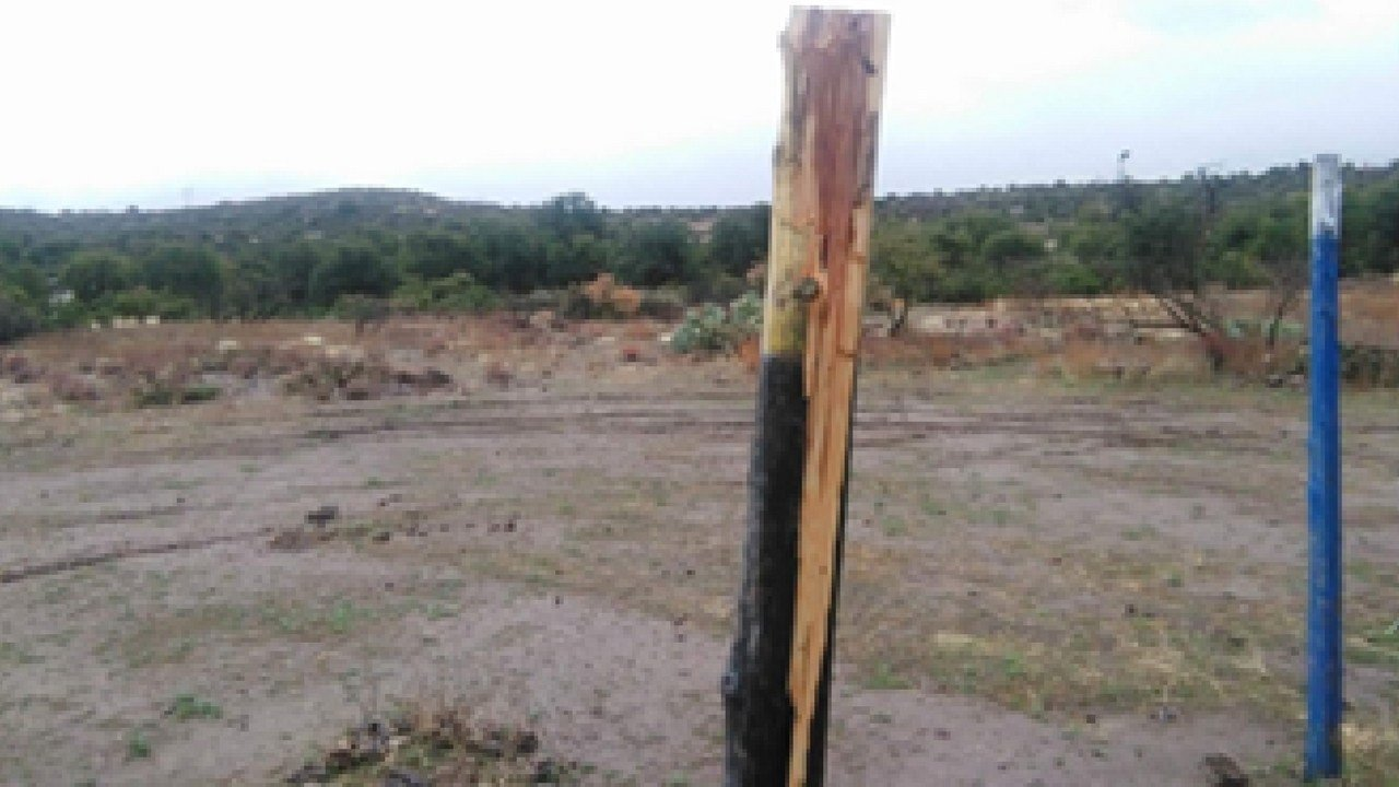 Two of the crosses were missing, while the other two appeared to be destroyed with an axe. (Source: Center for Biological Diversity)