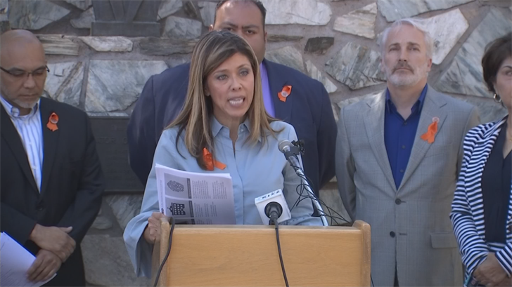 House Minority Leader Rebecca Rios said the governor's orders don't stop anyone from obtaining guns. (Source: 3TV/CBS 5)