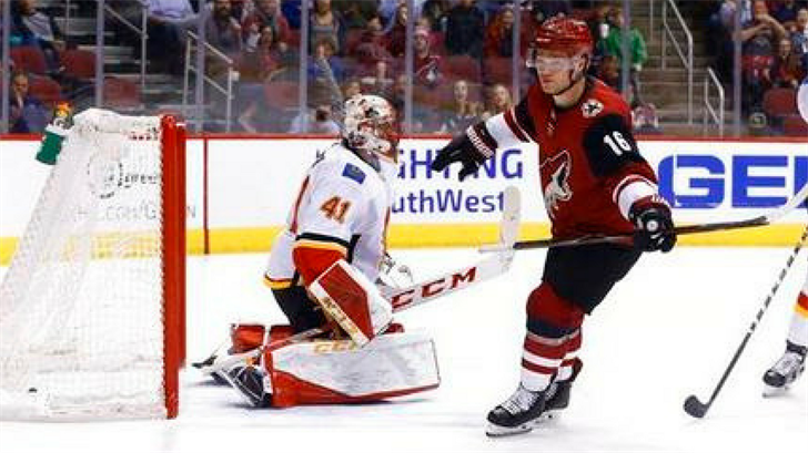 Arizona Coyotes left wing Max Domi (16) celebrates his goal against the Calgary Flames goaltender Mike Smith (41) during the second period of an NHL hockey game Monday, March 19, 2018, in Glendale, Ariz. (Source: AP Photo/Ross D. Franklin)