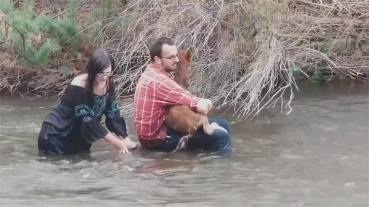 MCSO pulled the couple and the baby horse onto their boat and to safety. (Source: Salt River Wild Horse Management Group)