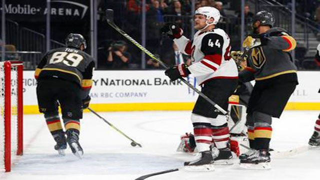 The Arizona Coyotes won 3-2 over the Vegas Golden Knights. (Source: AP Photo)