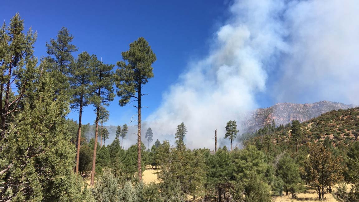 (Source: Forest Service: Tonto National Forest)