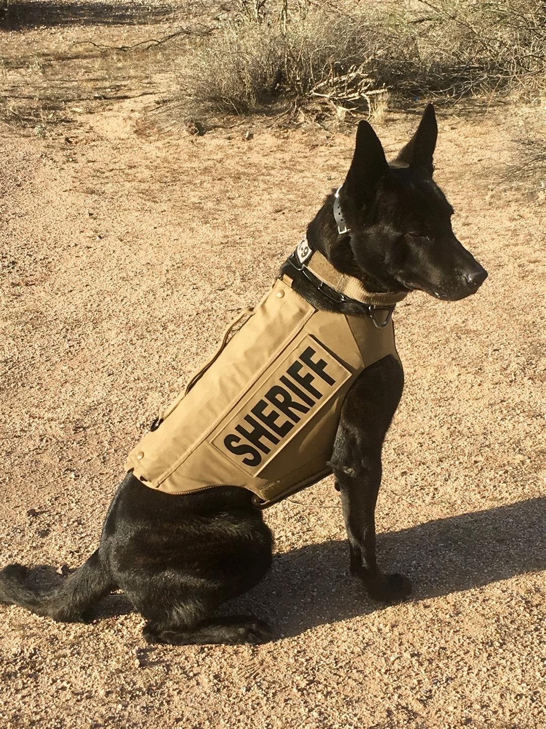 Vested Interest in K9s has a goal to provide bullet- and stab-protective vests to dogs of law enforcement and similar agencies across the country. (Source: MCSO)